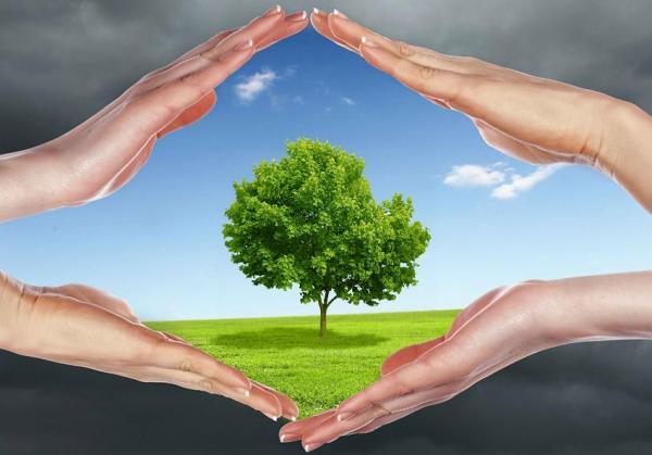 Va ObserBC contra la Contaminación Del Aire